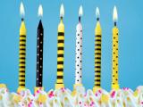 Svíčky dortové  6 ks černo-žluté