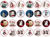 24 ks obrázků z jedlého papíru vánoce kočky
