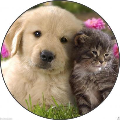Jedlý papír štěňátko s koťátkem 2