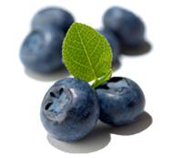 Frutafill borůvka 6 kg