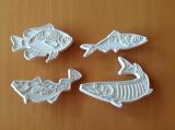 Sada vykrajovačů ryby
