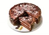 Ztužovač šlehačky  zeesan- čokoláda 1 kg