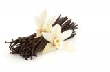 Ochucovací pasta vanilka  200 g