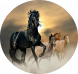 Jedlý papír koně