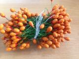 Pestíky velké oranžové