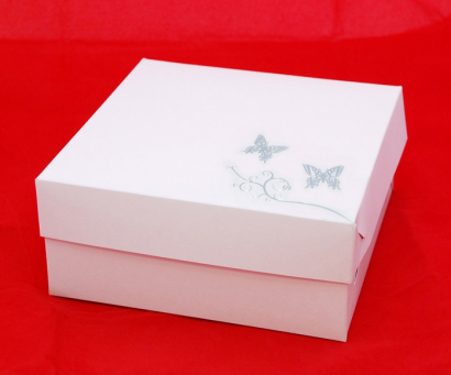 Krabička stříbrná ražba motýlci