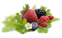 Ochucovací pasta lesní ovoce 200 g