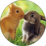 Jedlý papír králíčci 2
